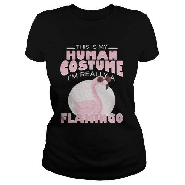 This is my human costume Im really a Flamingo ladies shirt