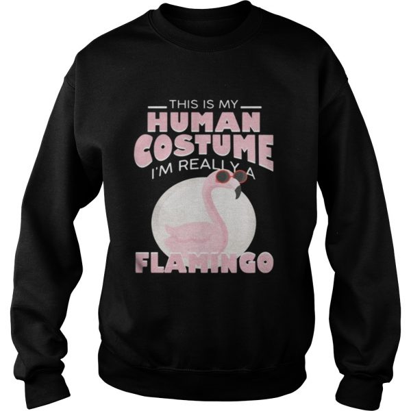 This is my human costume Im really a Flamingo sweat shirt