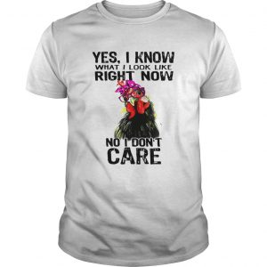 Hen yes I know what I look like right now no I dont care guy shirt